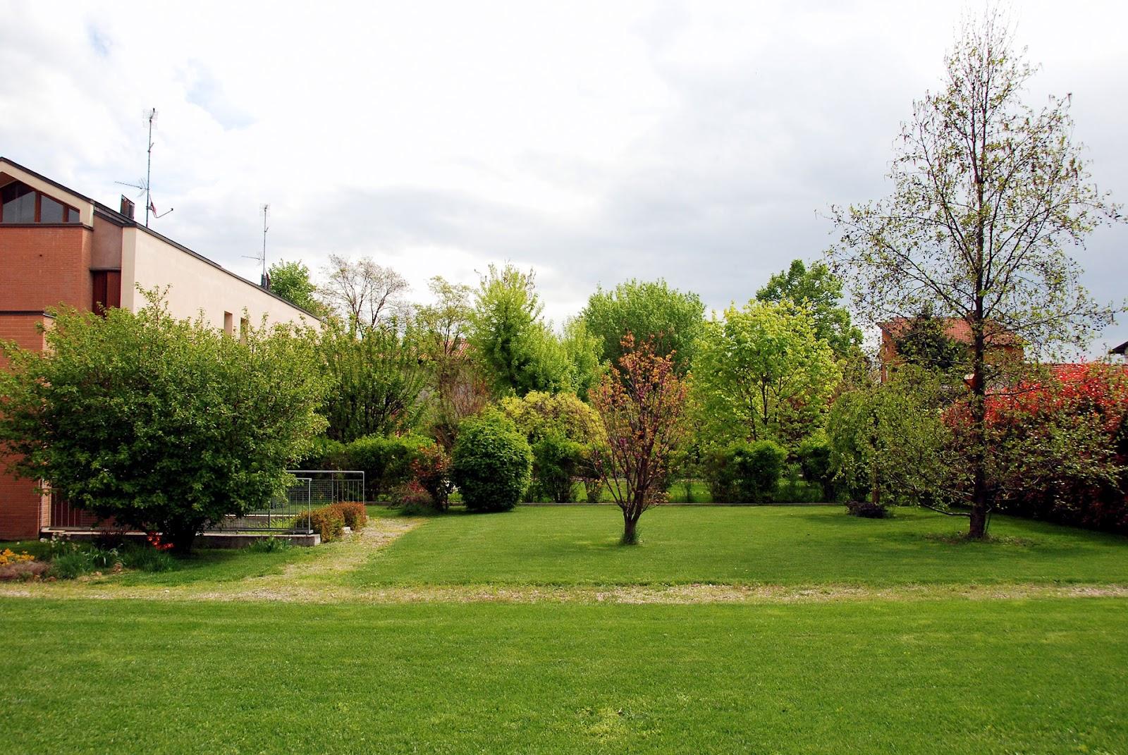 Il mondo in un giardino fine aprile in giardino - Alberi colorati da giardino ...