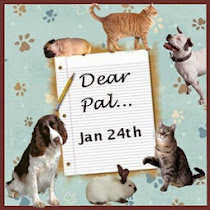 Letter to my Pet Pal
