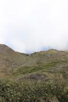 Big Sur Highway 1 foggy hills