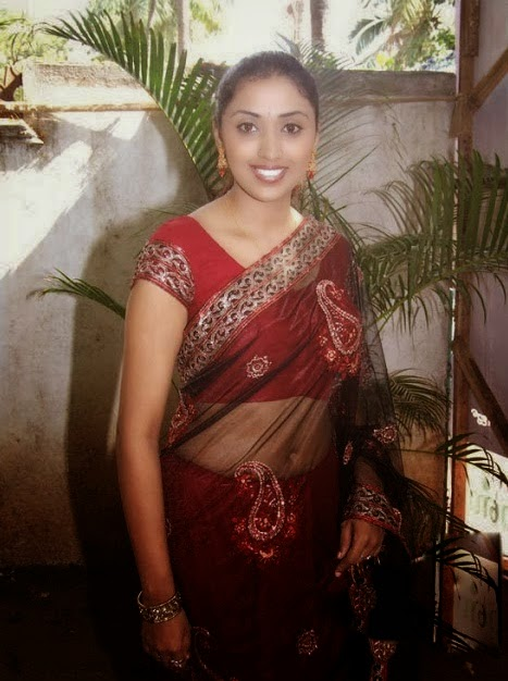 hot housewife in saree photos