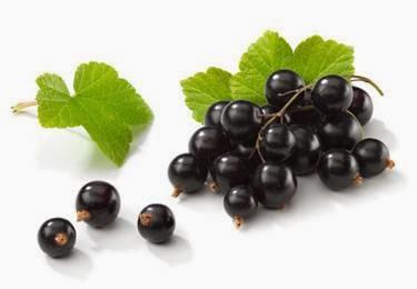 Blackcurrant Untuk Asam Urat dan Kesehatan Lainnya