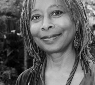 essay on alice walker beauty