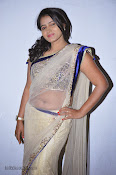 Actress Tanusha Photos in Saree at Present Love Audio-thumbnail-15