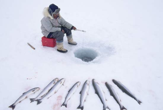 News for u 5 alternative winter sports and where to try them for Fishing in finland