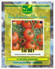Benih Tomat Gadang