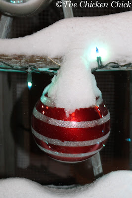 6+ Ways to Make Your Chicken Coop Merry and Bright!