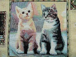 Katt tyg