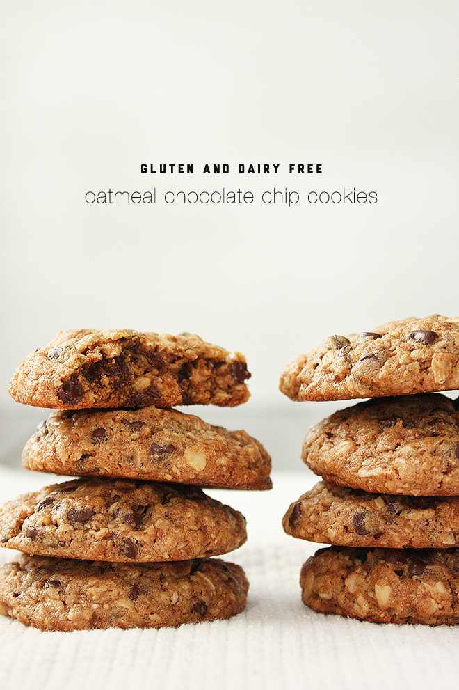 summer harms: gluten and dairy free oatmeal chocolate chip ...