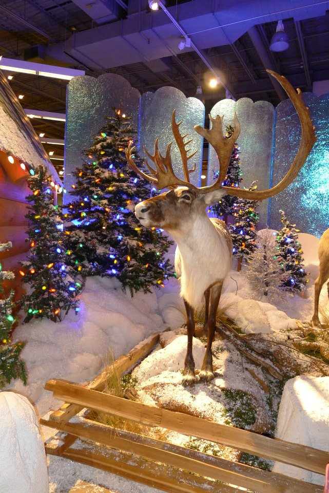 Santa's Wonderland At Bass Pro Shops (Gurnee Mills) - Little Lake ...