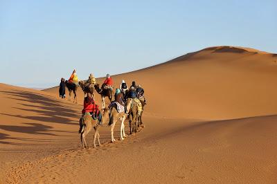 Camellos cruzando el desierto
