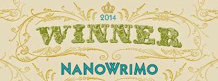NaNoWriMo Madness 2014