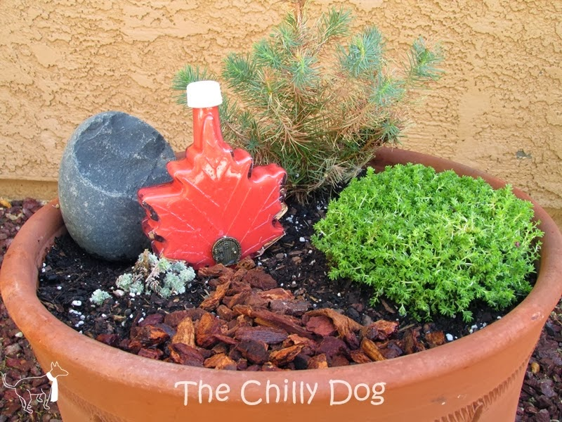 http://www.thechillydog.com/2014/03/craft-and-garden-tutorial-how-to-make.html
