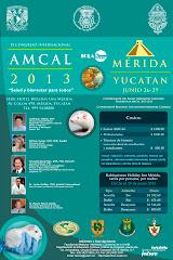 Pagina del Congreso Internacional AMCAL 2013