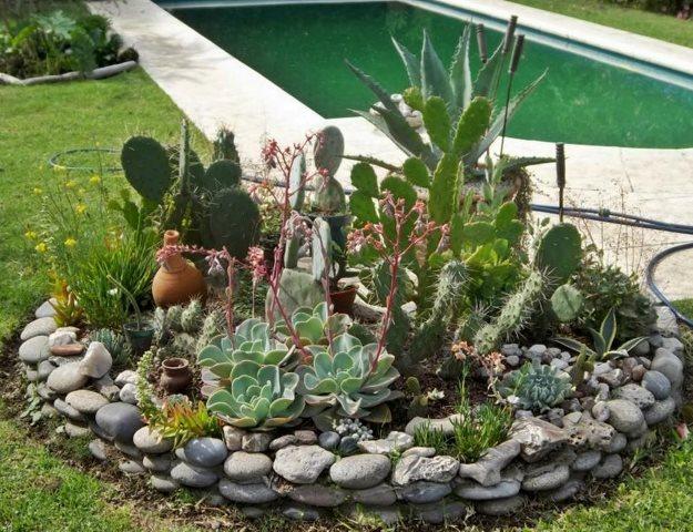 Entre p talos y espinas deco cactus - Decorar mi jardin ...
