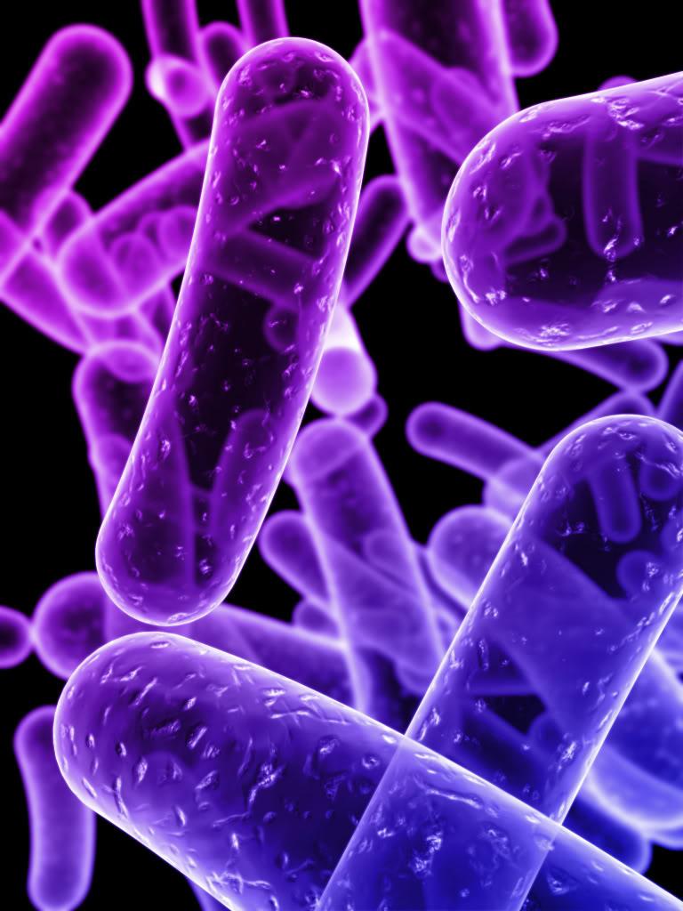 90 gigabytes de datos almacenados en bacterias