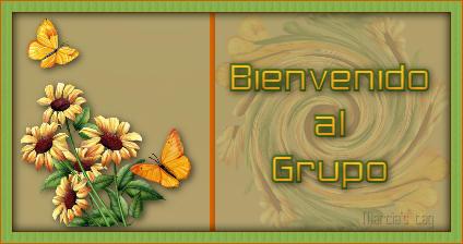 PRESENTACION Mariposa_goirasoles_bienvenido_al_grupo