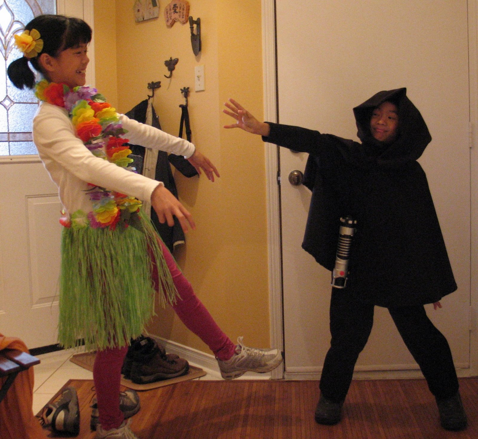 Here They Are     My Lovely Hula Dancing Hawaiian Girl And My Valiant Star  Wars Jedi, Luke Skywalker (from Episode VI, To Be Exact!)