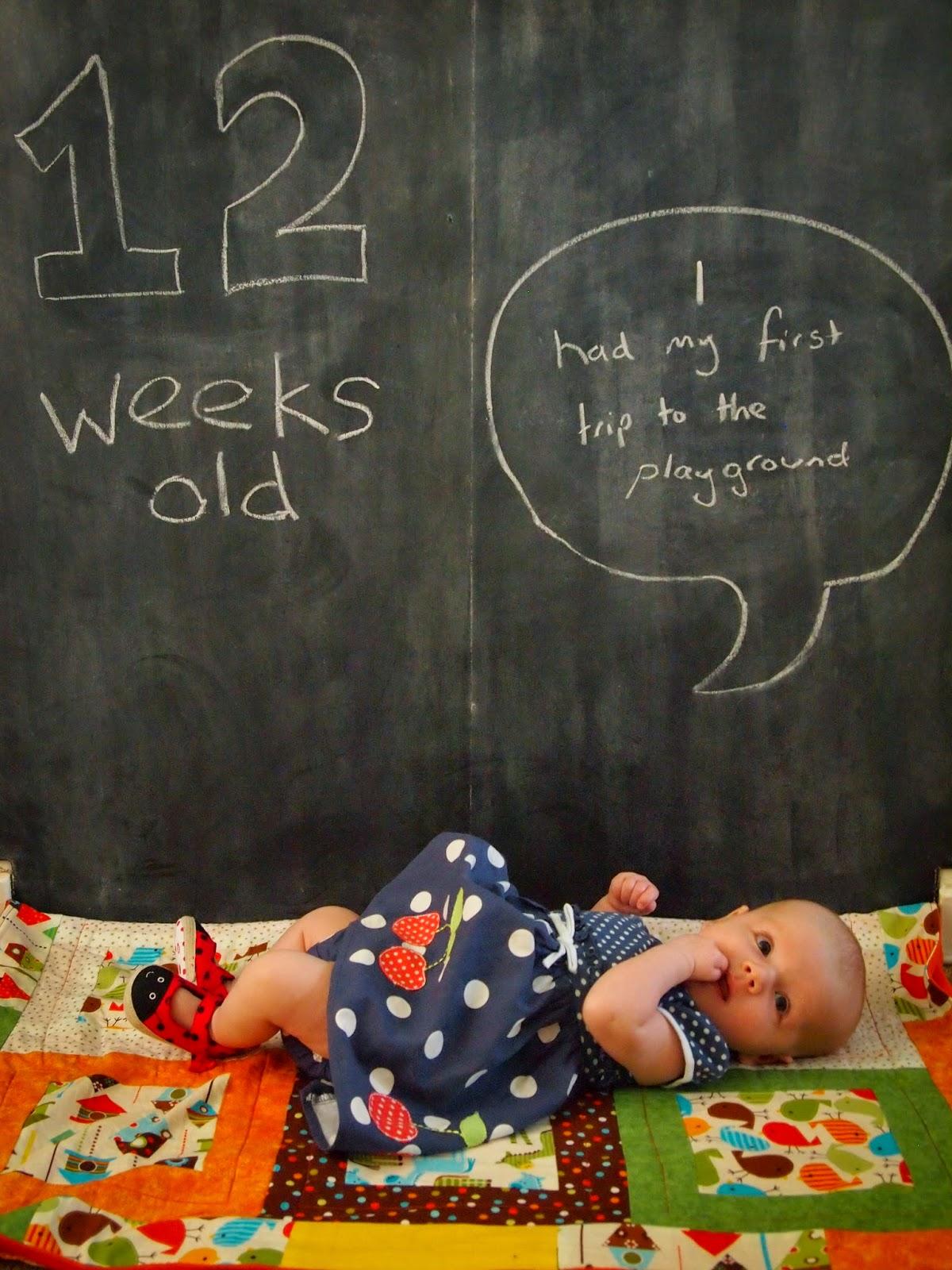 12 Weeks Old.