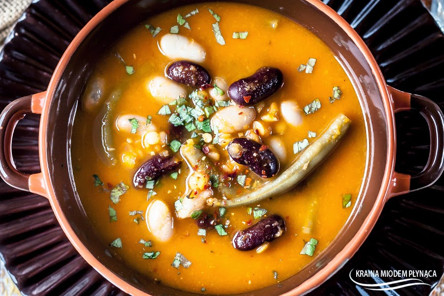 zupa strączkowa, zupa z fasolą, zupa z soczewicą, zupa fasolowa, zupa soczewicowa, zupa rozgrzewająca, zupa wegetariańska, kraina miodem płynąca