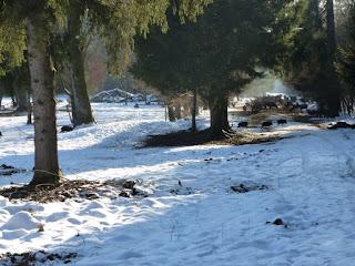 Wildbeobachtungsstelle mit Hügelgrab im Forstenrieder Park