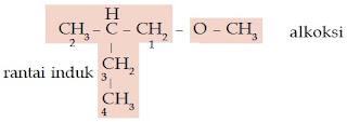 1-metoksi-2-metil-butana