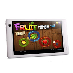 Ramos W17 Pro Dual Core Android Tablet