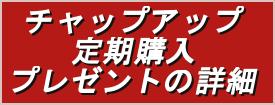 チャップアップの特典のまとめ!只今、年末年始のキャンペーン中(2015年12月1日~)