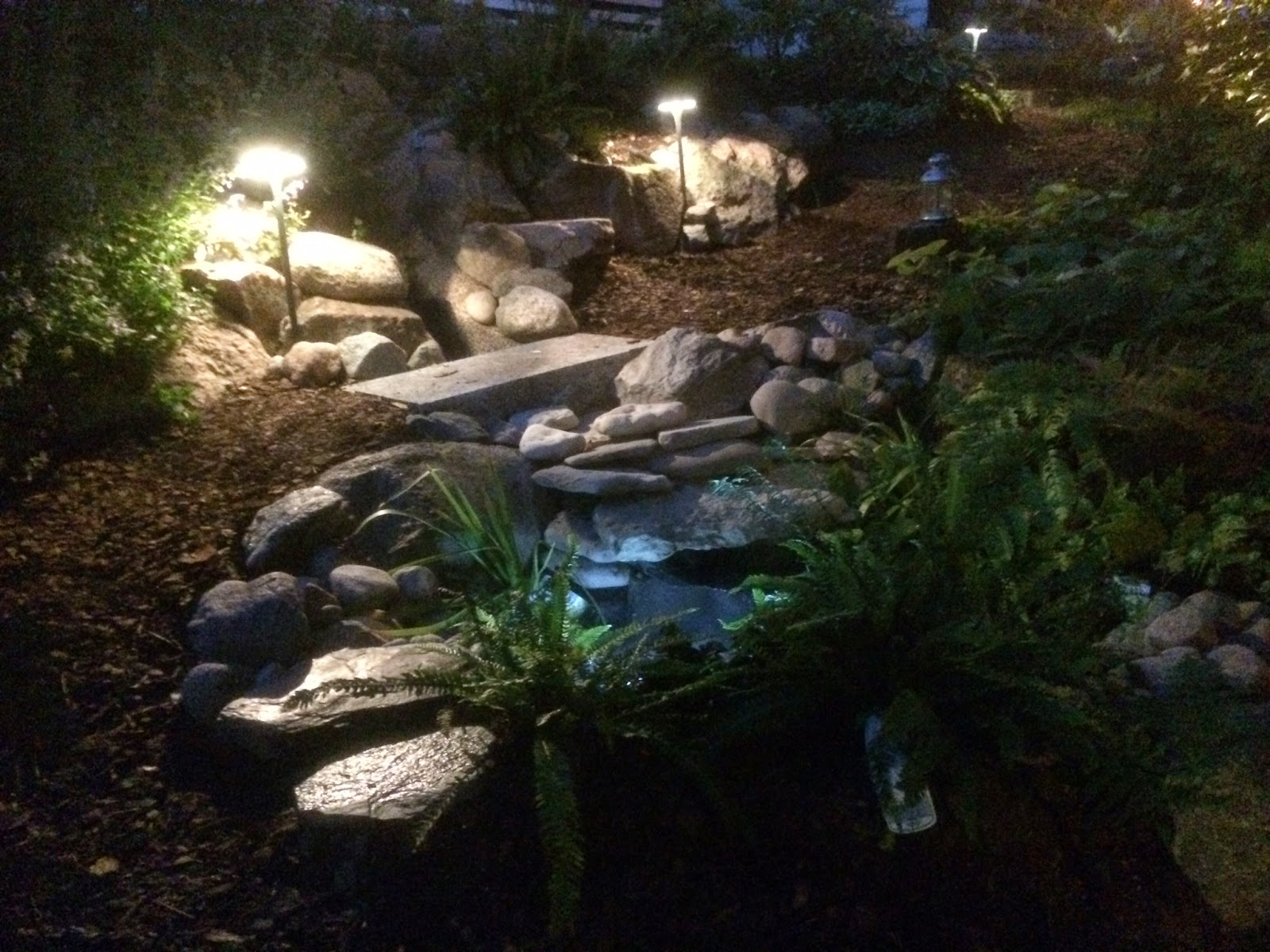 Zen sei garden