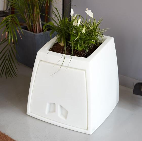 litter box planter 3