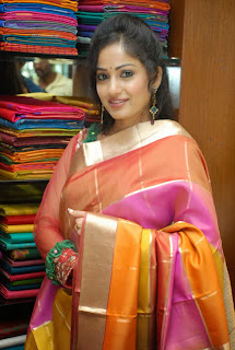 Actress Madhavi Latha Pictures in Salwar Kameez at Sreeja Fashions South Silk Festival 2013 Launch 0010.jpg