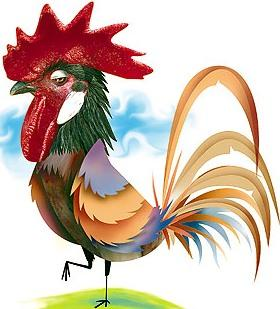 Gallo en dibujo