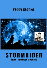 Stormrider Now Also In Paperback