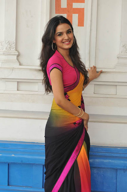 Actress Jasmine Saree Photos Gallery