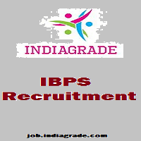 IBPS RRB CWE IV Application Form 2015