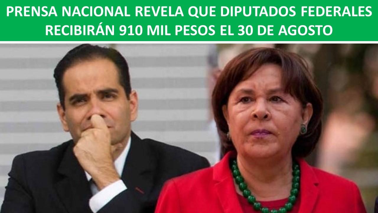 DIPUTADOS FEDERALES RECIBIRÁN 910 MIL PESOS EL 30 DE AGOSTO