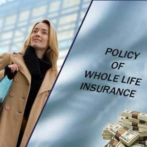 life insurance whole life insurance