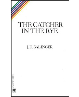 catcher in the rye essay questions catcher in the rye essay questions and answers