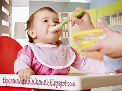 makanan-bayi-sehat-bergizi