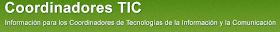 IKT koordinatzailea