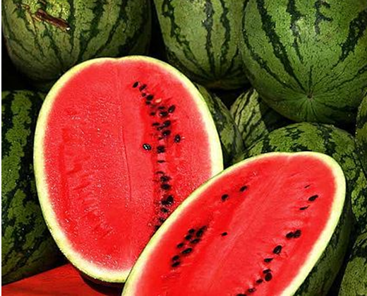 maintaining health with watermelon