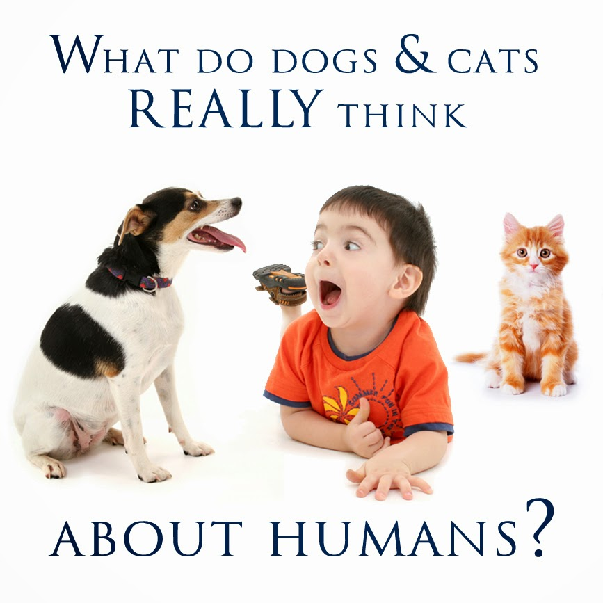 http://1.bp.blogspot.com/-obabJ076BMk/Uv4sQApFp8I/AAAAAAAACKY/_Zi23Gf3aQc/s1600/Pets+think+of+humans.jpg
