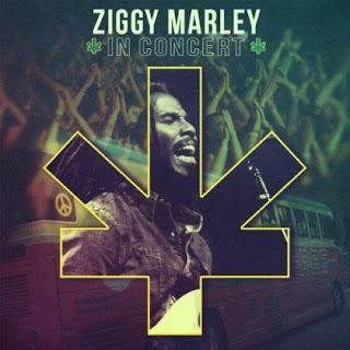 1358032013 b009tkblvo.01. sx420 sclzzzzzzz v399822390  Ziggy Marley – In Concert (2013)