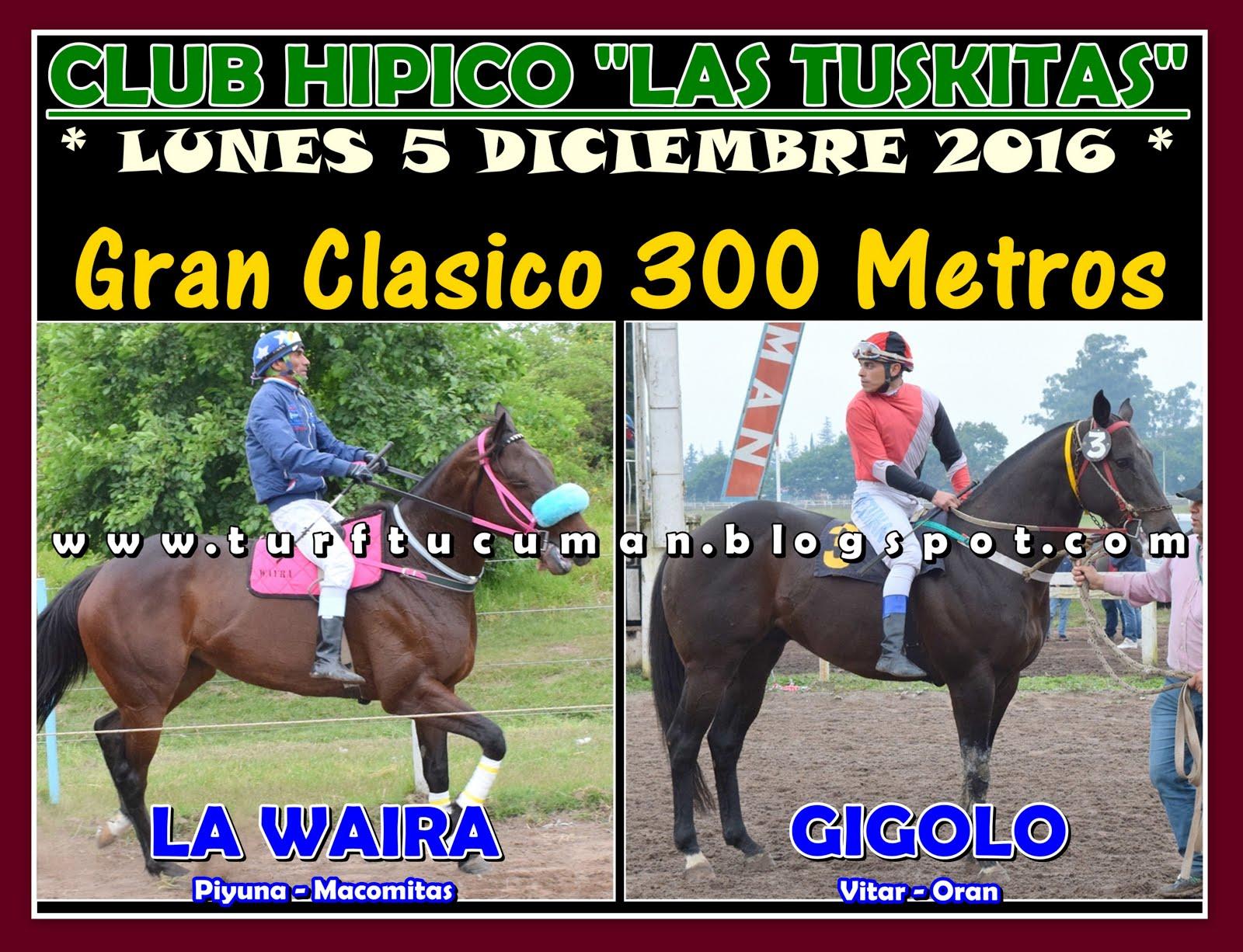 WAIRA VS GIGOLO