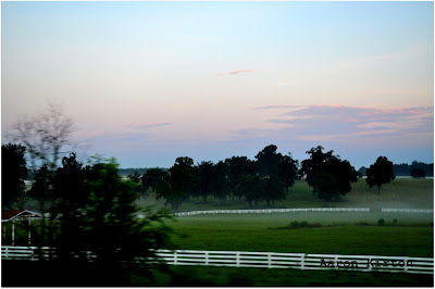 Colorful Skies with White Fences and Green Pastures in North Central Florida