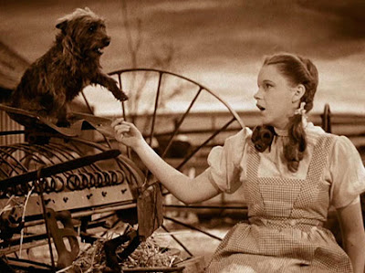 Judy Garland singing Over the Rainbow to Toto in Wizard of Oz