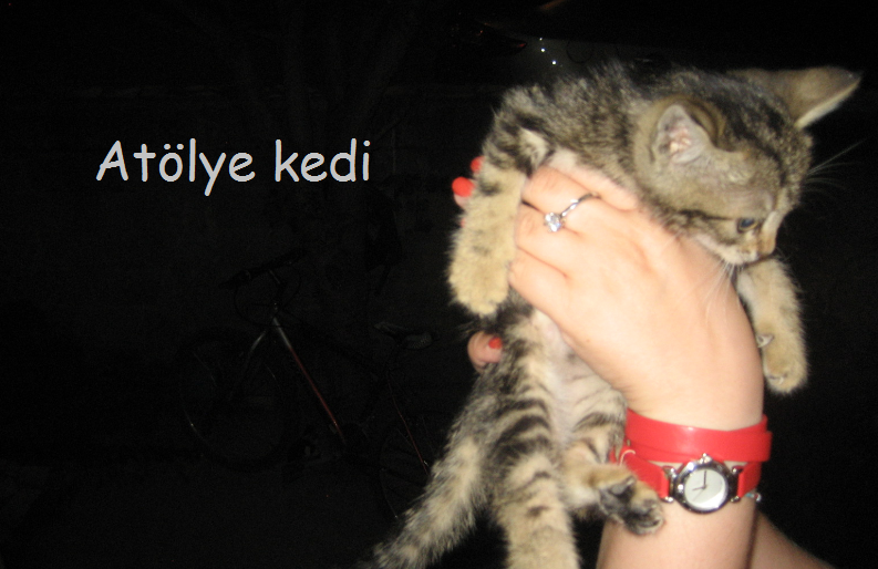 Atolye Kedi.