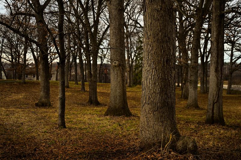 Landscape photography, Simi Jois Photography
