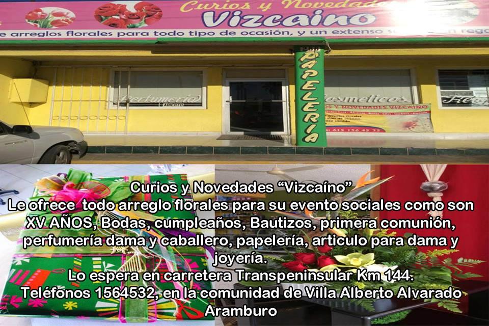 Curios y Novedades Vizcaino