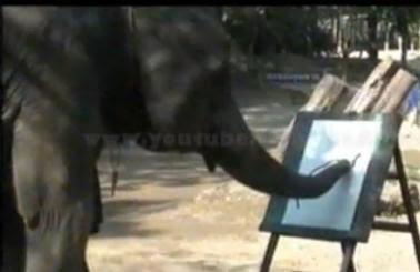 Shanti, gajah yang mahir melukis