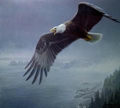 """""""Os que esperam no Senhor,renovarão as suas forças,subirão com asas como aguias.....IS 40;30"""